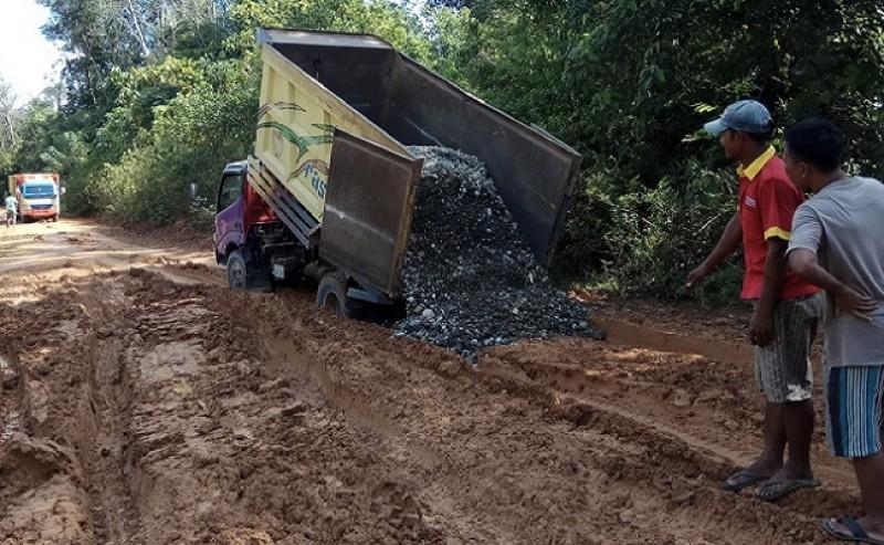 Cisadane Sawit Raya Did Pile with Lethal in Dusun IV, Beringin Makmur II